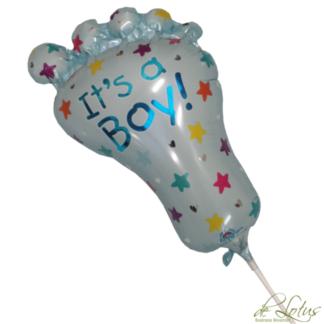 Ballon Boy