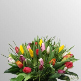 Afbeelding van het voordeelboeket gemengde tulpen.
